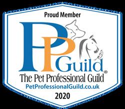 PPGBI Member Badge 2020_white with url b