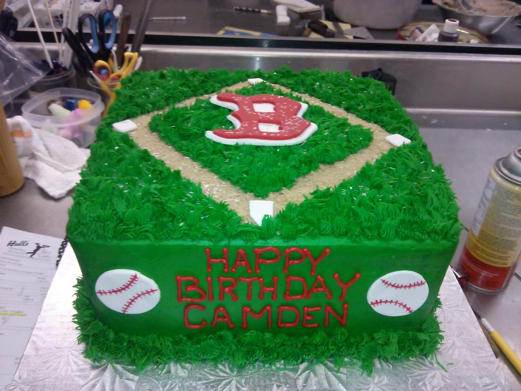 Baseball Diamond 2014-02-06