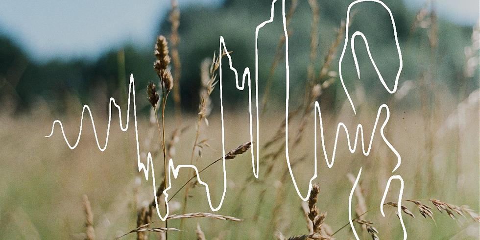 Morning Soundwalk around Ryebank Fields with The Manchester Ear