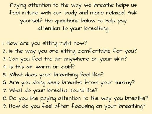 Your Brain & Mindfulness