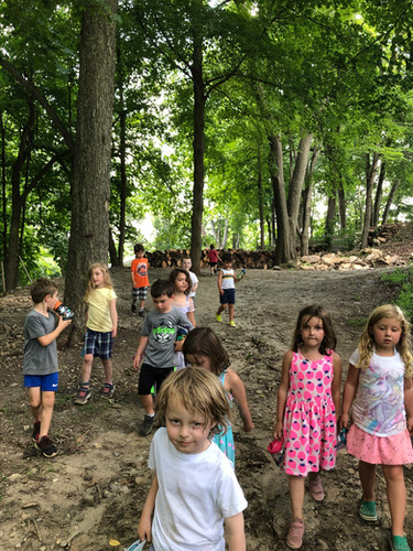 children returning from a trail work in the summer