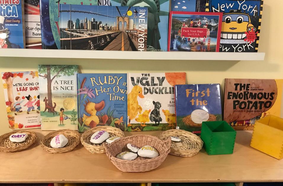 shelf of books cks
