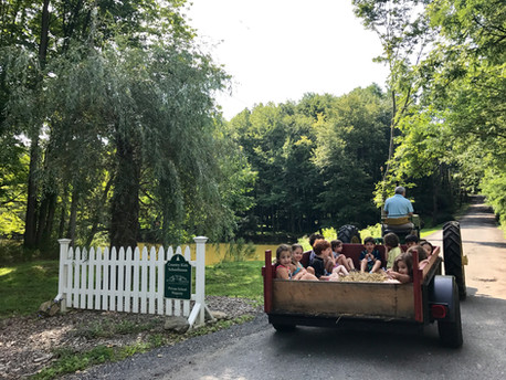 children driving in a tractor to a trail