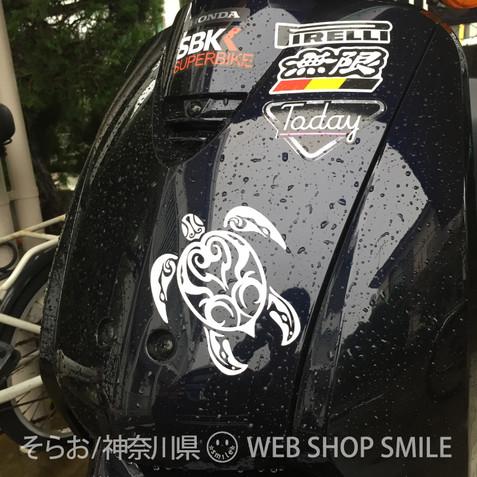 nc-smile ハワイアン ステッカー ホヌ トライバル タトゥー honu tribal tattoo (S, ホワイト)
