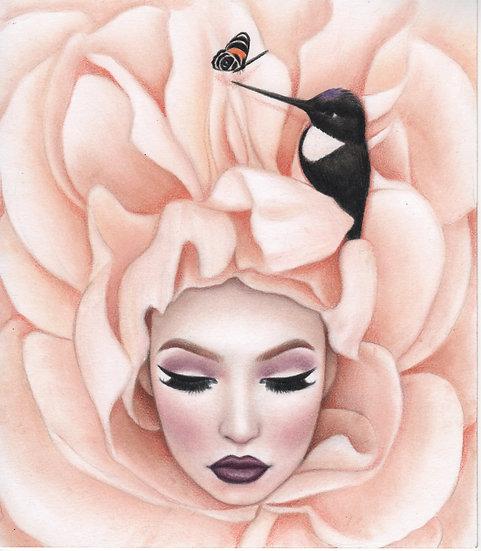 """Sleeping Nectar"" 8x10in Print"