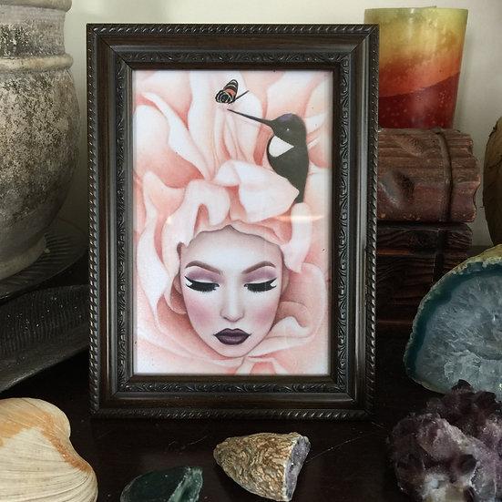 """Sleeping Nectar"" 4x6in framed print"