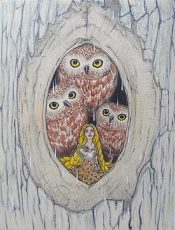 The Owls Nest