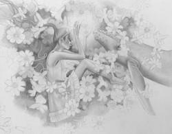 Amity sketch