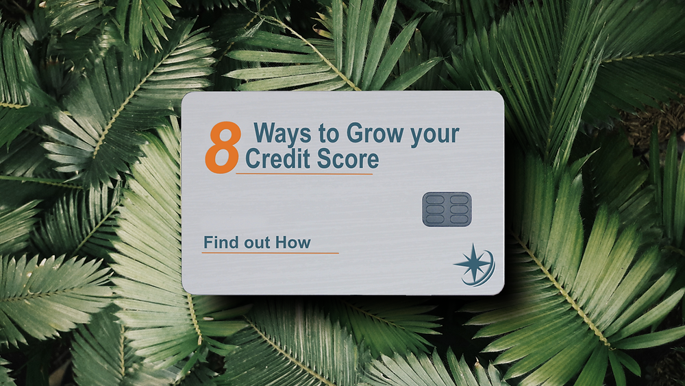 Growing-credit-score-decisions