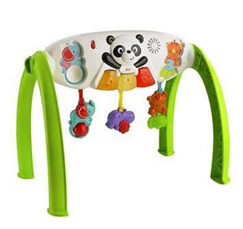 Fisher Price Grow with Me Gym