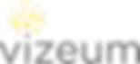 Vizeum_logo.png
