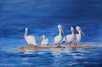 137-White-Pelicans-scaled.jpg