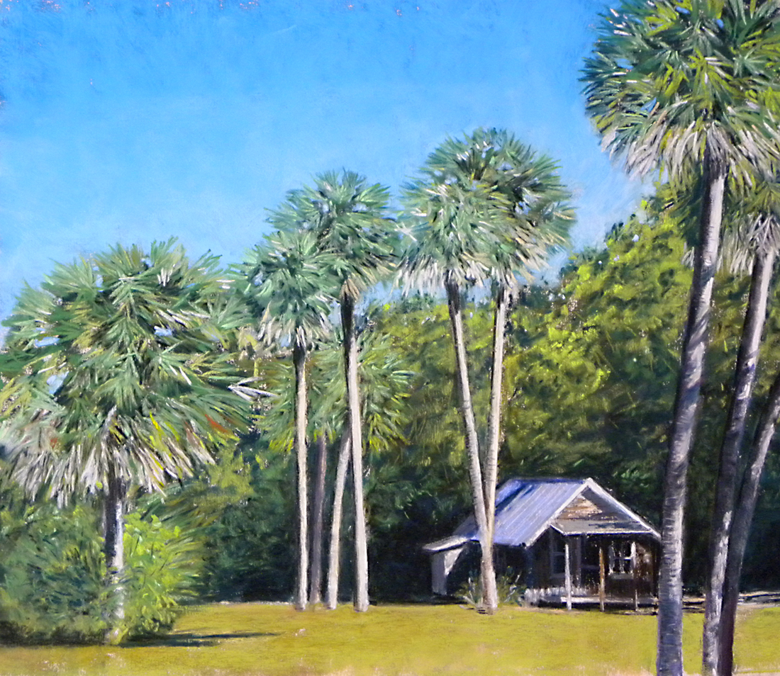Palms at Koreshan Park