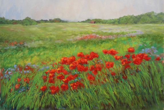 Wild Poppies near Flanders Fields Mary Lou Hicks