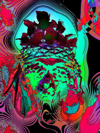web peruindian 01.jpg