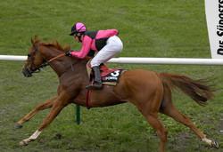 Pferderennen-Maienfeld-2013