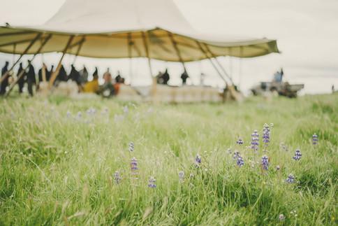 Tent_07.jpg