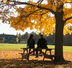 Relaxing in Eglinton Park