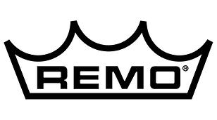 remo-inc-logo-vector.png