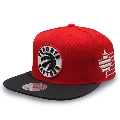 Toronto Raptors Mitchell and Ness Current Logo Racers Snapback
