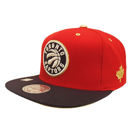 Men's Toronto Raptors Mitchell and Ness Gold Button Red Snapback