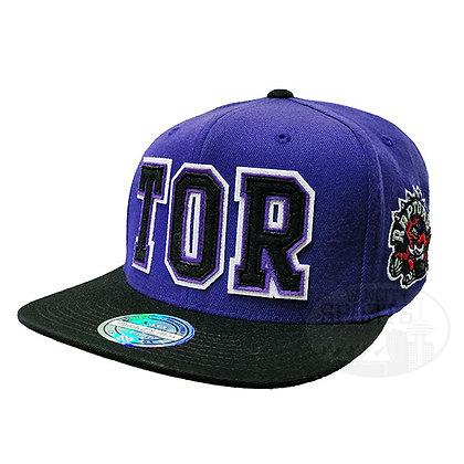 Toronto Raptors Retaggio Mitchell and Ness Purple Flex Snapback Hat