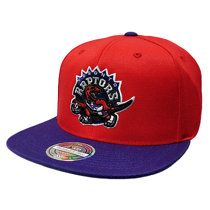 Men's Toronto Raptors Mitchell & Ness Wool 2 Tone Vintage Snapback Hat Cap NBA
