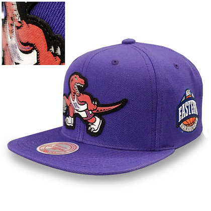 Men's Toronto Raptors Mitchell and Ness Silicon Grass Logo Snapback