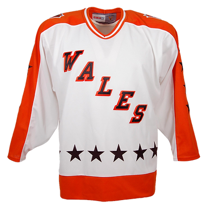 Men's All-Star Jersey Wales conference CCM NHL