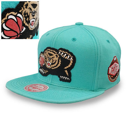 Men's Vancouver Grizzlies Mitchell and Ness Silicon Grass Logo Snapback