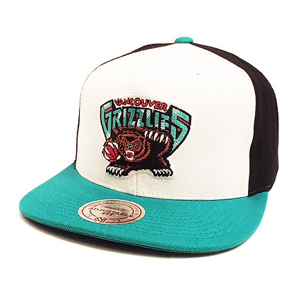 Men's Vancouver Grizzlies Mitchell and Ness HWC Classic PinWheel Snapback