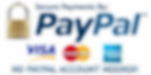 Secure-payment-Paypal.png