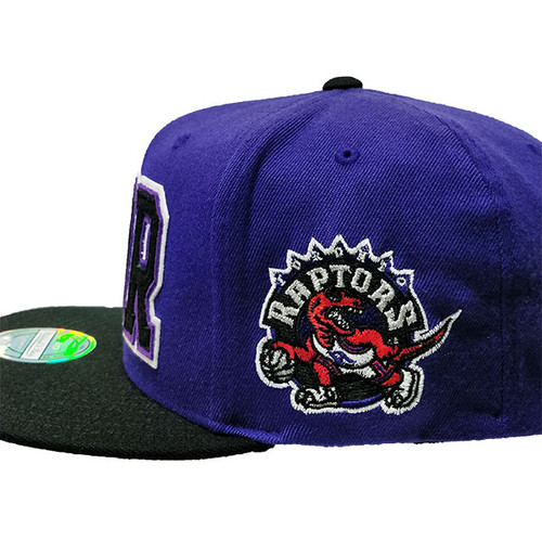 5a697f531ea Toronto Raptors Retaggio Mitchell and Ness Purple Flex Snapback Hat