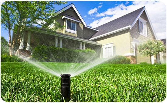lawn, irrigaton, sprinkler, sprinkler head, sprinklers