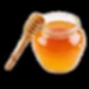 Honey-1%20(1)_edited.png