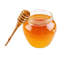 Honey-1%20(1)_edited.png