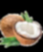 cap-coconut_edited.png