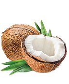 cap-coconut_edited.png