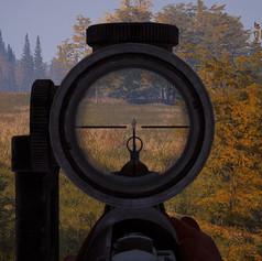 aim down the sight.jpg