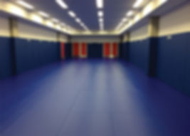 Bespoke Dojo Design, Manufacture and Installation supplied directly to many HMP, PSC, police, NHS, military and private sector establishments worldwide