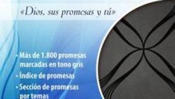 Biblia de Promesas NEGRA -  Letra Grande RVR 1960
