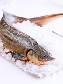 jahutatud-kala