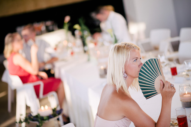 palav-pulmapäev