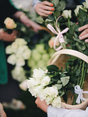 pulma-lilled