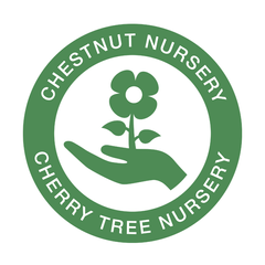 Chestnut-Nursery.png