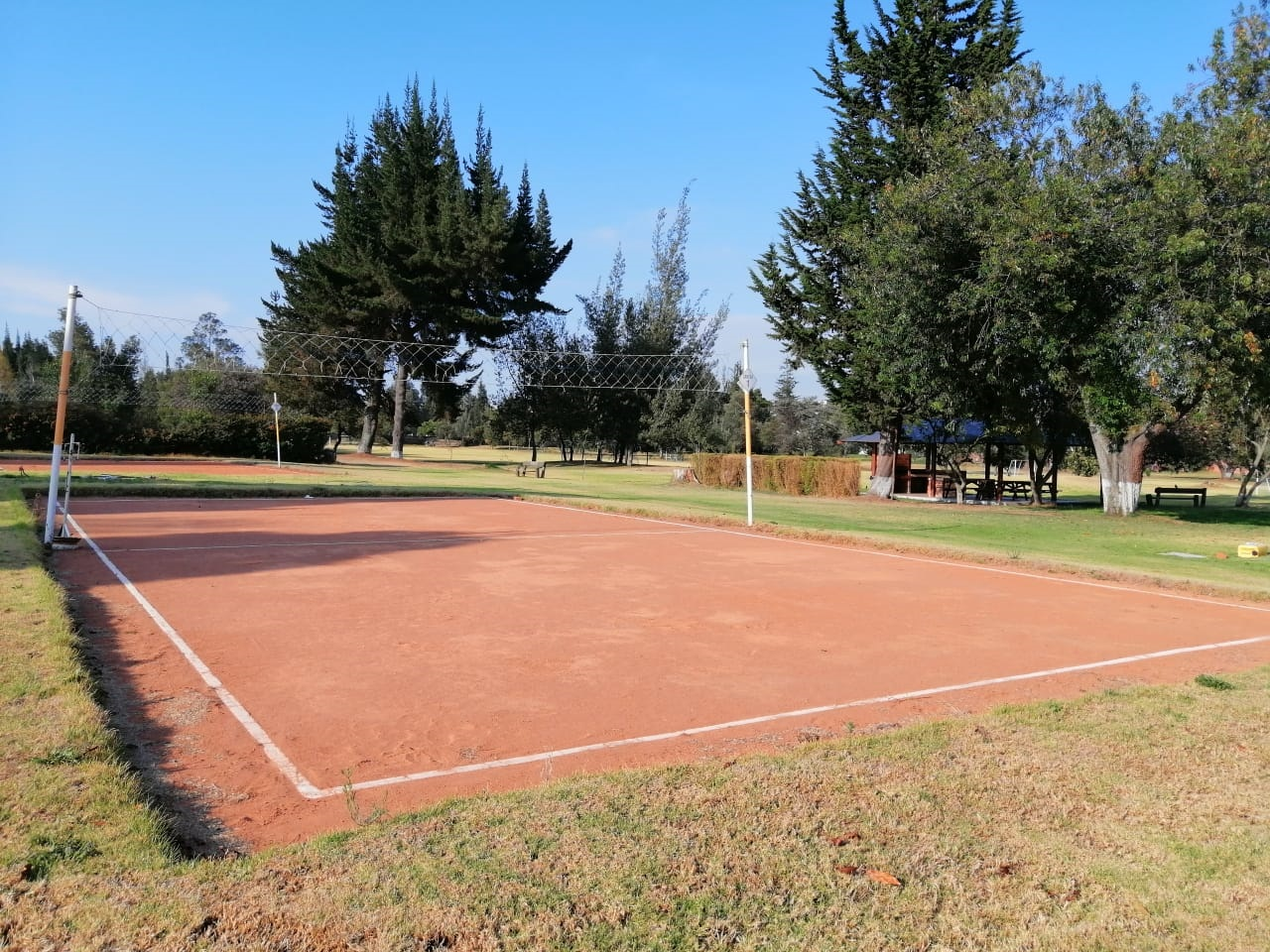 canchas de voley nov