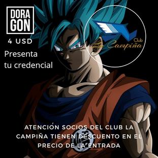 DORAGON 2019