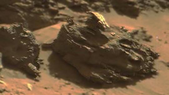 Mars Had Advanced Life
