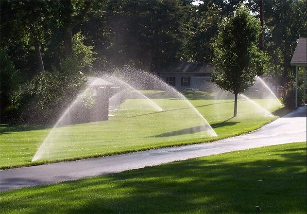 Lawn and Pool Service in Pensacola, FL