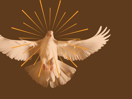¿La Iglesia nació en Pentecostés?